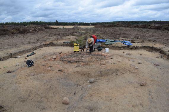 Freilegungsarbeiten an der Fundstelle im Vorfeld des Tagebaus Jänschwalde, Foto: BLDAM
