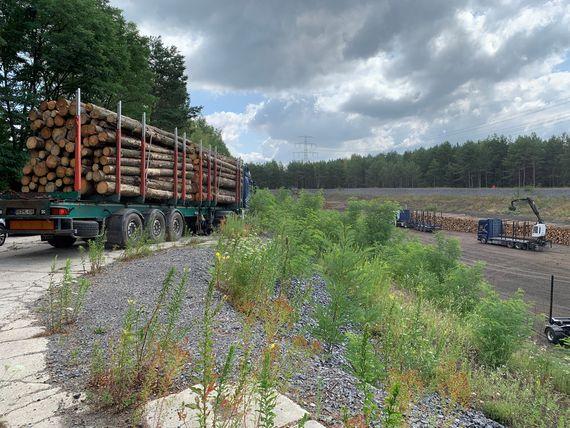 LKWs transportieren die Holzstämme aus dem Landkreis Bautzen zum Kraftwerksgelände, Foto: LEAG