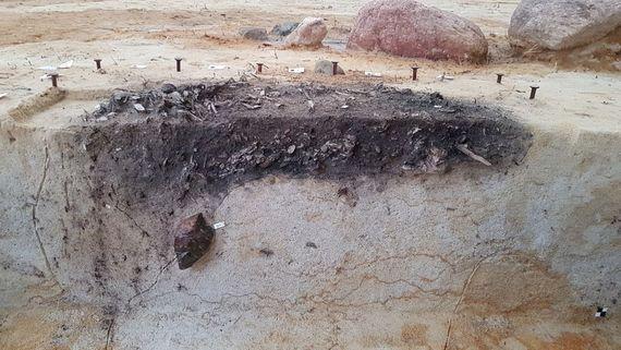 Jungbronzezeitliche Siedlung im Tagebau Nochten - Querschnitt Grabstelle, Foto: LEAG