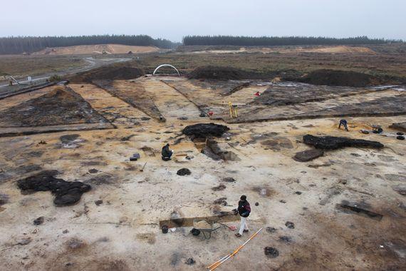 Grabungsfläche in einer großen Pechsiederei des Mittelalters im Tagebauvorfeld Nochten